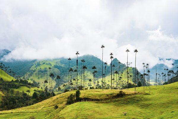 5 dingen die je moet weten voordat je naar Colombia reist